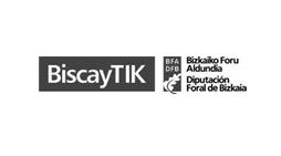 biscaytik logo